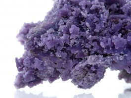Facts About Grape Agate