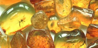 crystal combinations for amber